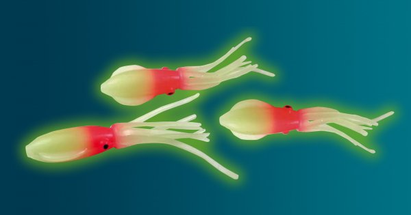 Behr Trendex Flat Paddle Octopus 6,5 cm stark selbstleuchtend