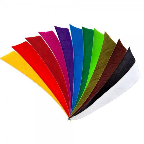 Bearpaw Feder RW Shield 5 Zoll einfarbig